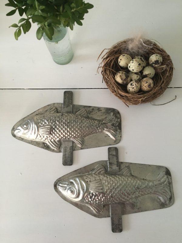 moule poisson